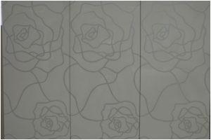 Фасад с шелкографией